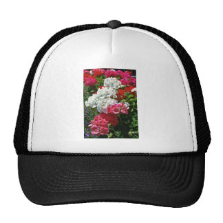 White And Red Geraniums flowers Mesh Hats