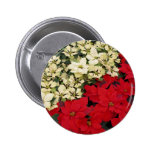 White and Red Poinsettias I Holiday Floral Button
