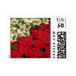 White and Red Poinsettias I Holiday Floral Postage