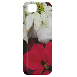 White and Red Poinsettias II Christmas Holiday iPhone SE/5/5s Case