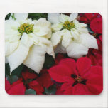 White and Red Poinsettias II Christmas Holiday Mouse Pad