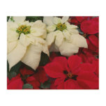 White and Red Poinsettias II Christmas Holiday Wood Wall Decor
