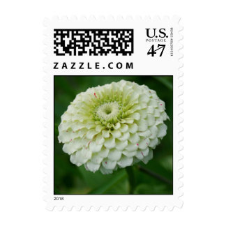 White and red speckled Dahlia flower blossom stamp