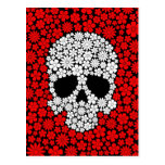 White and Red Wild Flowers Skull Post Cards
