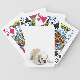 White and tan bulldog bicycle playing cards