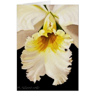 White and Yellow Cattleya Orchid Greeting Card