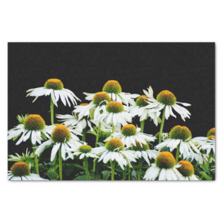 """White and Yellow Daisies on Black 10"""" X 15"""" Tissue Paper"""