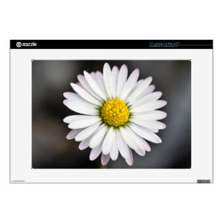 White and yellow daisy skin for laptop