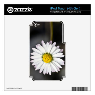 White and yellow daisy skins for iPod touch 4G