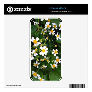 WHITE AND YELLOW FLOWERS DECAL FOR THE iPhone 4