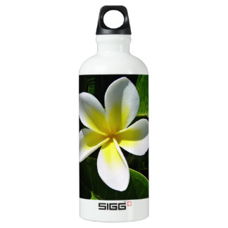 White and Yellow Frangipani blossom Aluminum Water Bottle