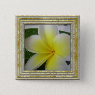 White And Yellow Frangipani Flower Pinback Button