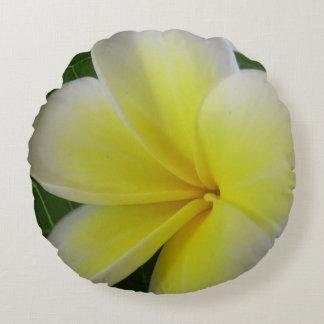White And Yellow Frangipani Flower Round Pillow