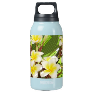 White and Yellow Frangipani Flowers with Leaves in Thermos Bottle