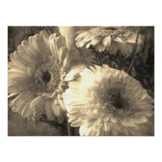 White and Yellow Gerbera and Calla 1 Antiqued Poster