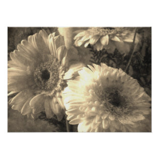 White and Yellow Gerbera and Calla 1 Antiqued Posters