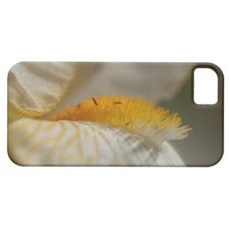 White and Yellow Iris iPhone SE/5/5s Case