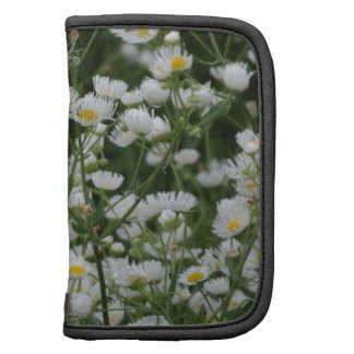 White and Yellow Mini little Daisy Aster flowers Planner