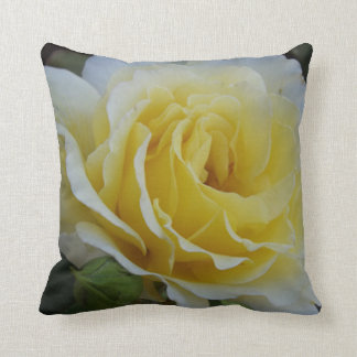 White and Yellow Rose Throw Pillow