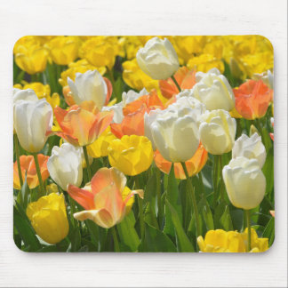 White and yellow tulips mouse pad