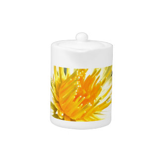 white and yellow water lily teapot