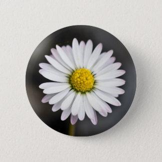 White and Yellow Wild Daisy Pinback Button