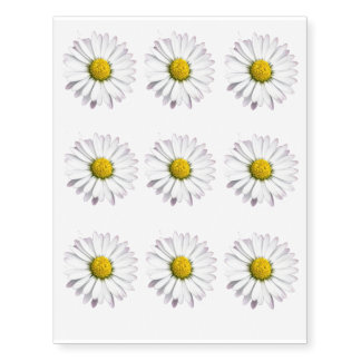 White and yellow wild daisy temporary tattoos
