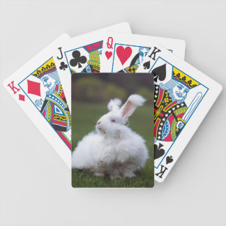 White Angora Rabbit Playing Cards