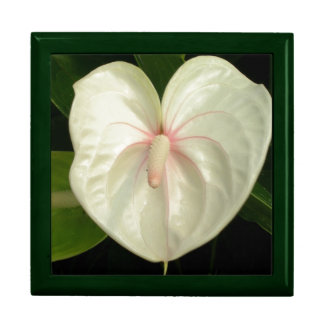 White Anthurium Keepsake Boxes