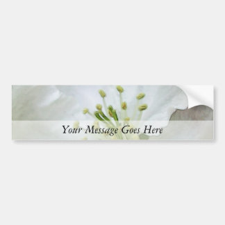 White Apple Blossom Close-Up Bumper Sticker