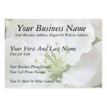 White Apple Blossom Close-Up Business Cards
