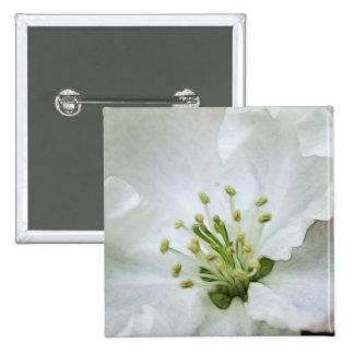 White Apple Blossom Close-Up Button