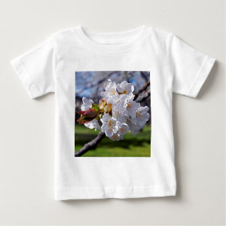 White apple blossoms in spring baby T-Shirt