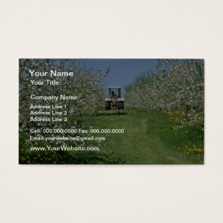white Apple orchard cultivating, Nova Scotia flowe Business Card