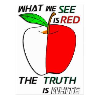 White Apple Postcard