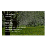 white Apple trees in the spring flowers Double-Sided Standard Business Cards (Pack Of 100)
