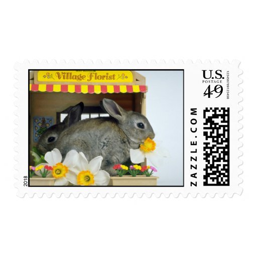 white Apricot and Blue Rex rabbits flowers Postage Stamps
