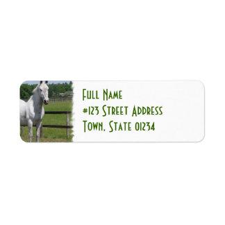White Arab Horse Return Address Label