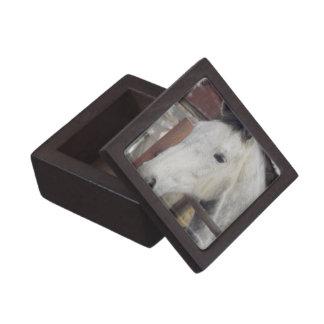 White Arabian Horse Gift Box Premium Gift Box