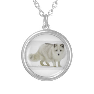 White Arctic Fox Blends Into The Snow Silver Plated Necklace