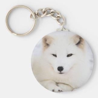 White arctic fox in snow basic round button keychain