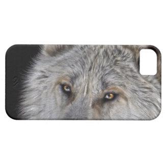 White Arctic Wolf Eyes Wildlife Photo iPhone SE/5/5s Case