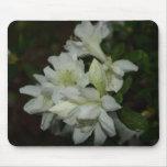 White Azalea Blossoms Mousepad