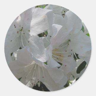 White Azalea Classic Round Sticker