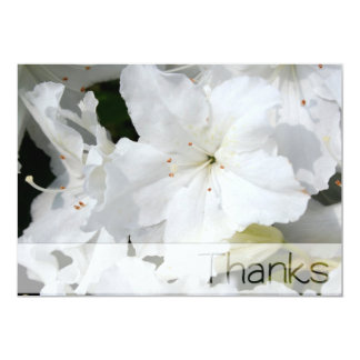 White Azalea - Thanks Card