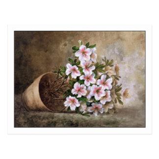 White Azaleas by Paul de Longpre Post Card