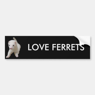 White Baby Ferret Bumper Sticker