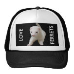 White Baby Ferret Hats