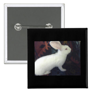 White Baby Flemish Pinback Buttons