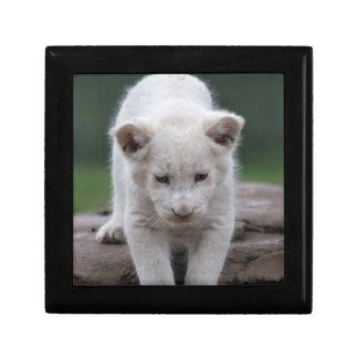 White baby lion cub trinket box